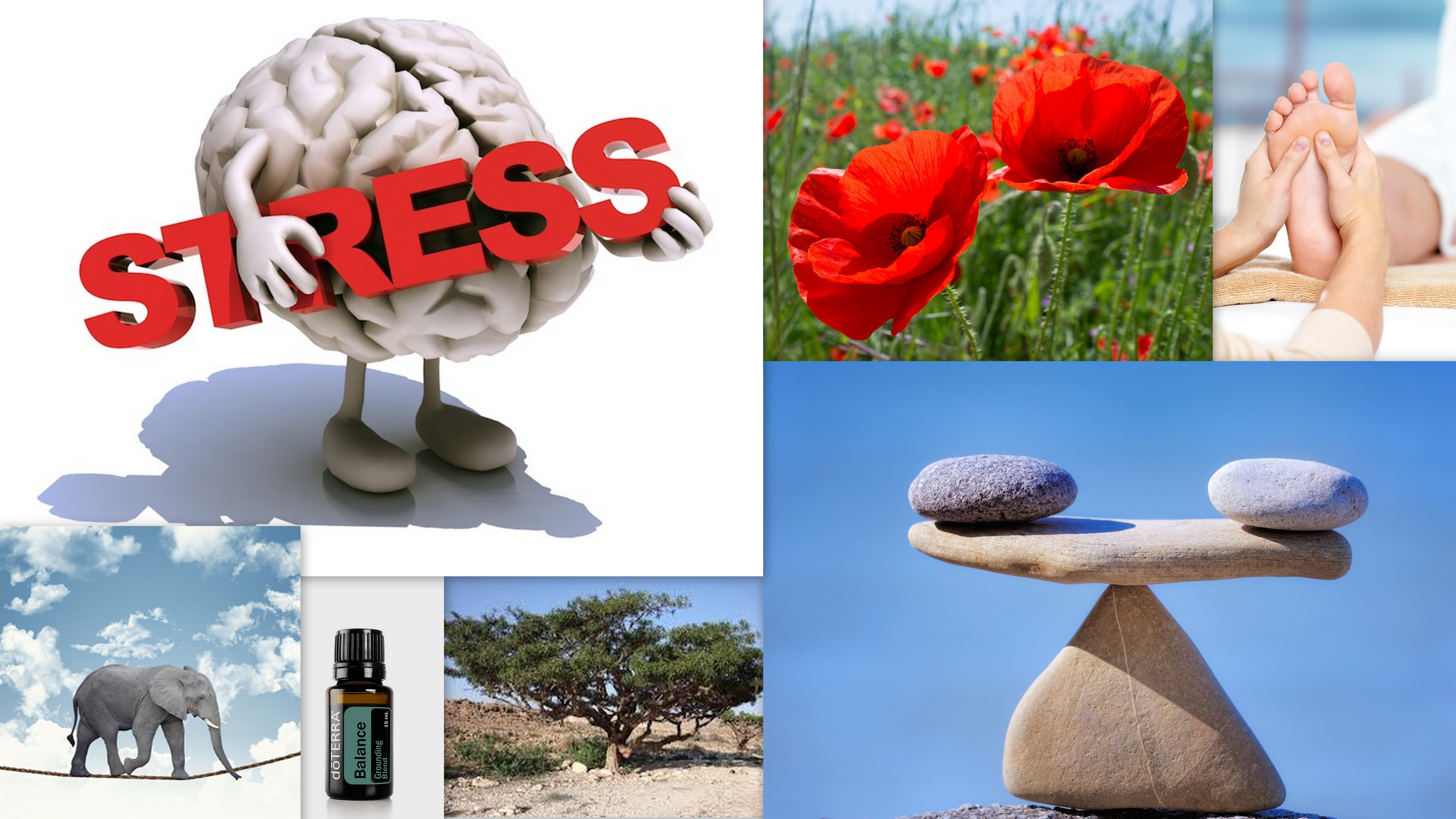 Voetreflexologie en stress